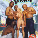 Free Interracial DVDs
